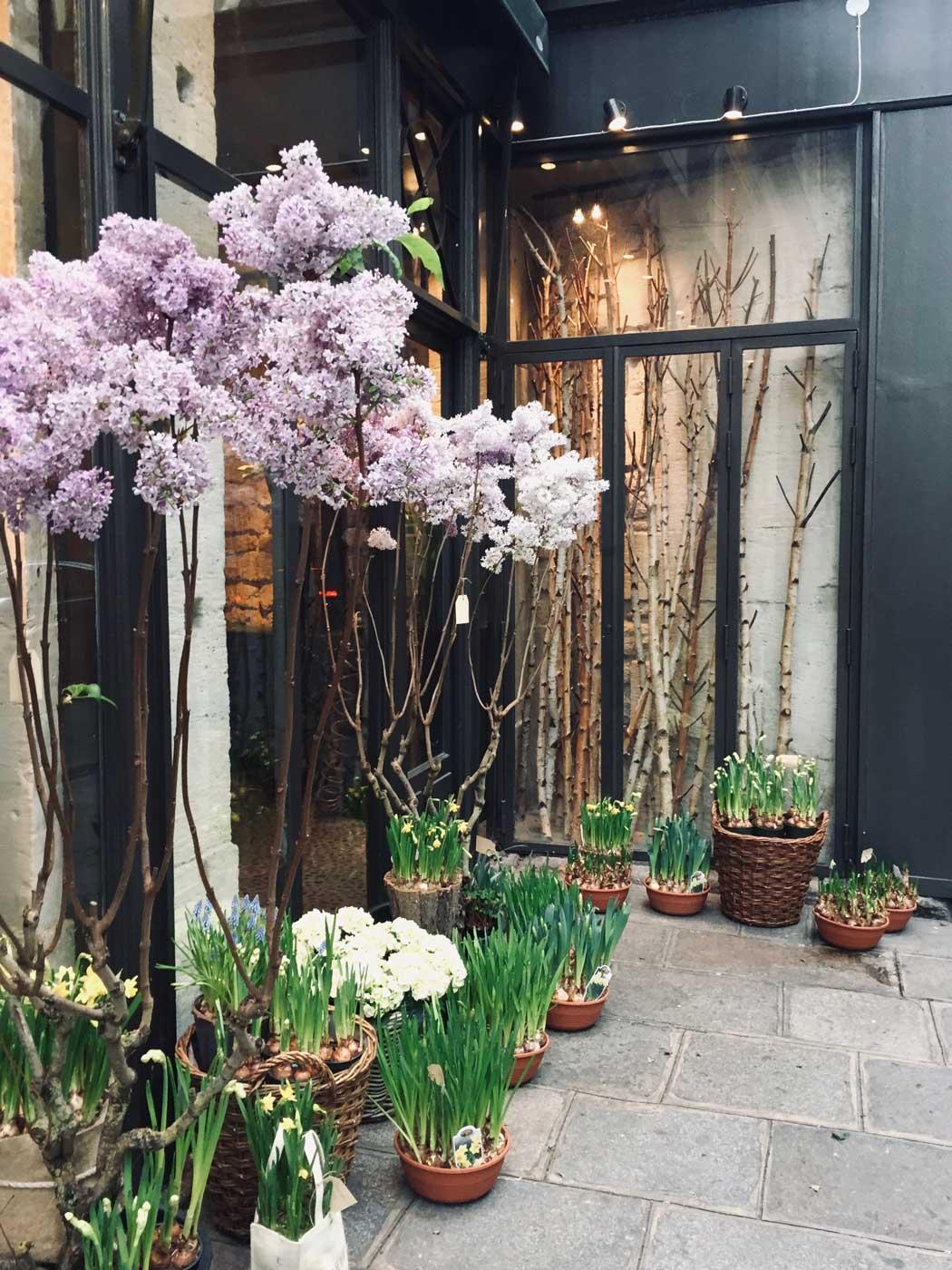 Stephane chapelle Parisian florist