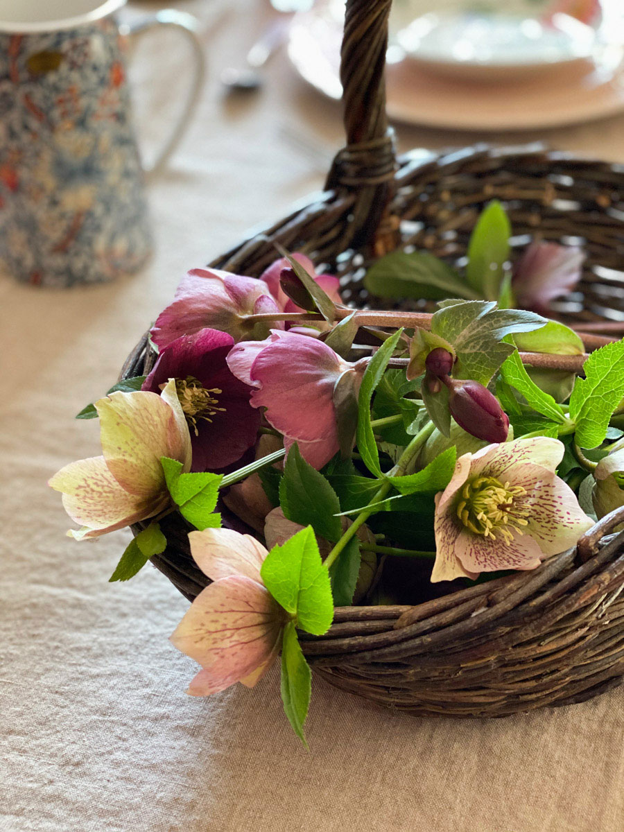 a-charming-spring-table-hellebores