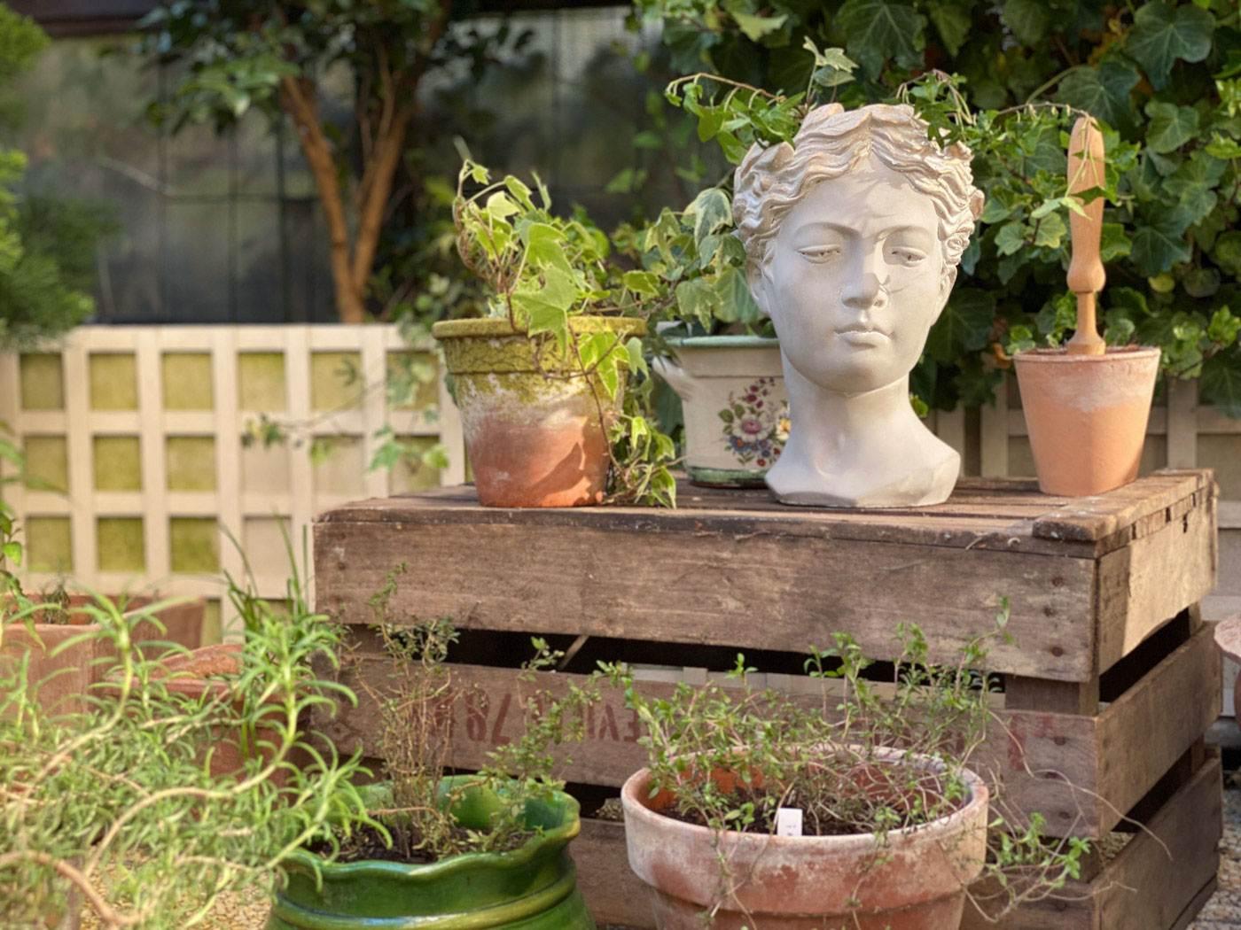 une-bonne-maison-parisian-terrace-herbes-aromatiques